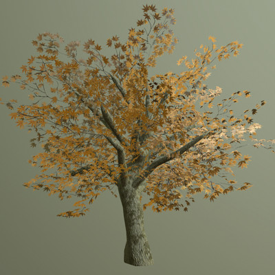 Christopher barker tree standalone
