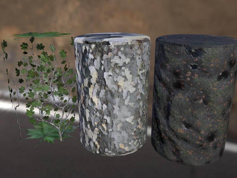 Joan misse platanaceae textures