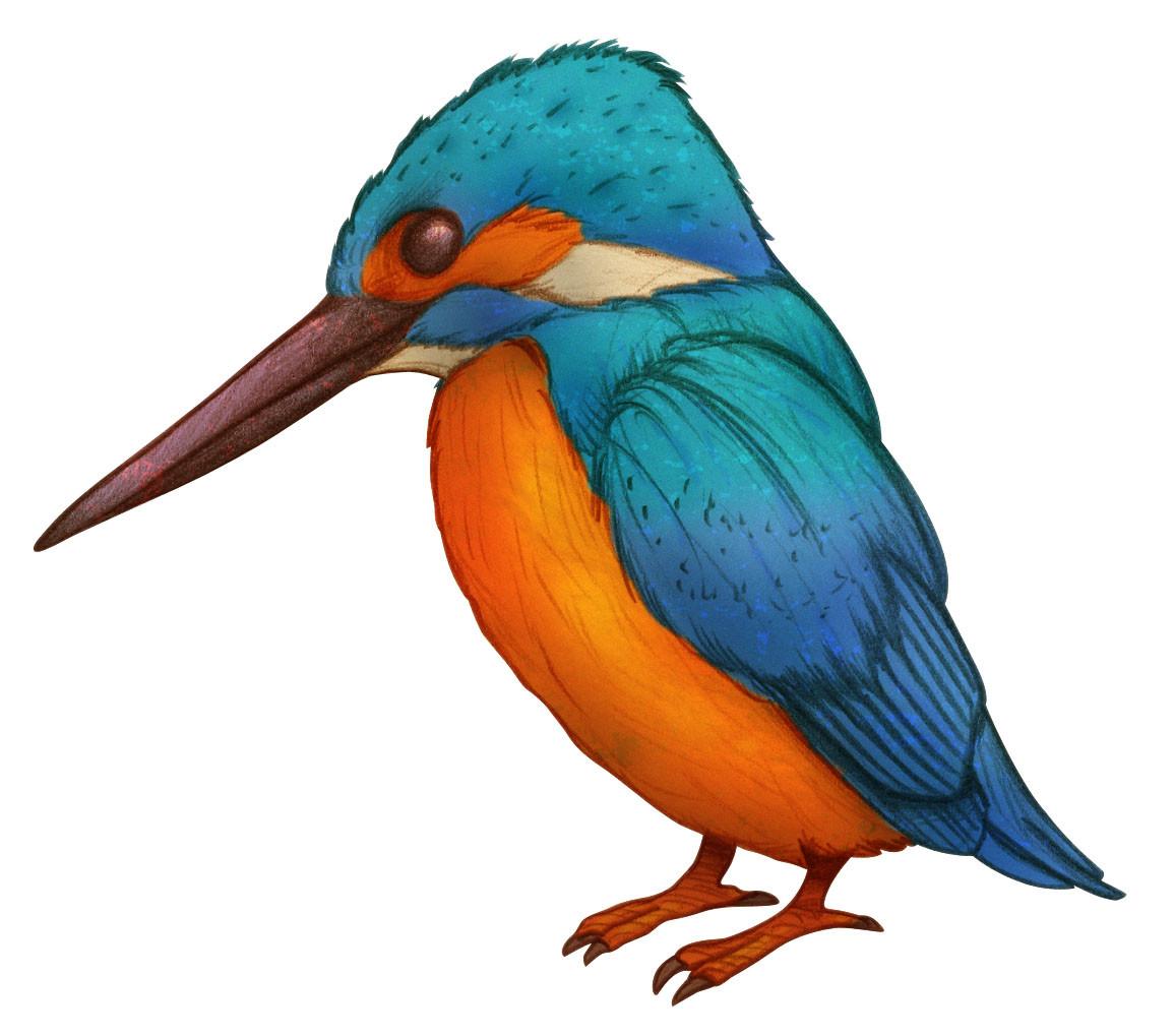 Autogiro illustration studio martin pescador
