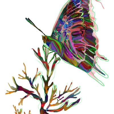 Archan nair butterfly
