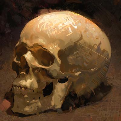 Bartlomiej gawel czaszka