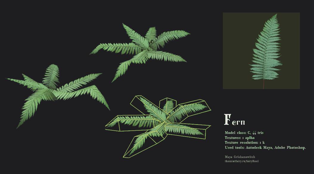Maya grishanowitch fern