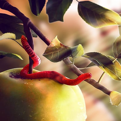 The Worm and the Apple