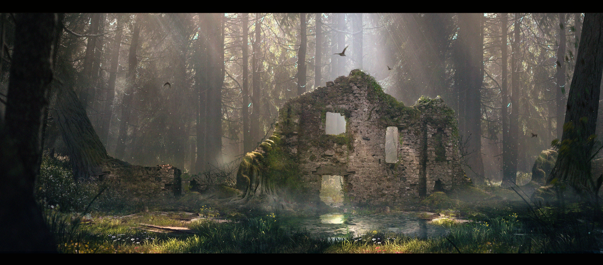 Julian calle magical forest 2web