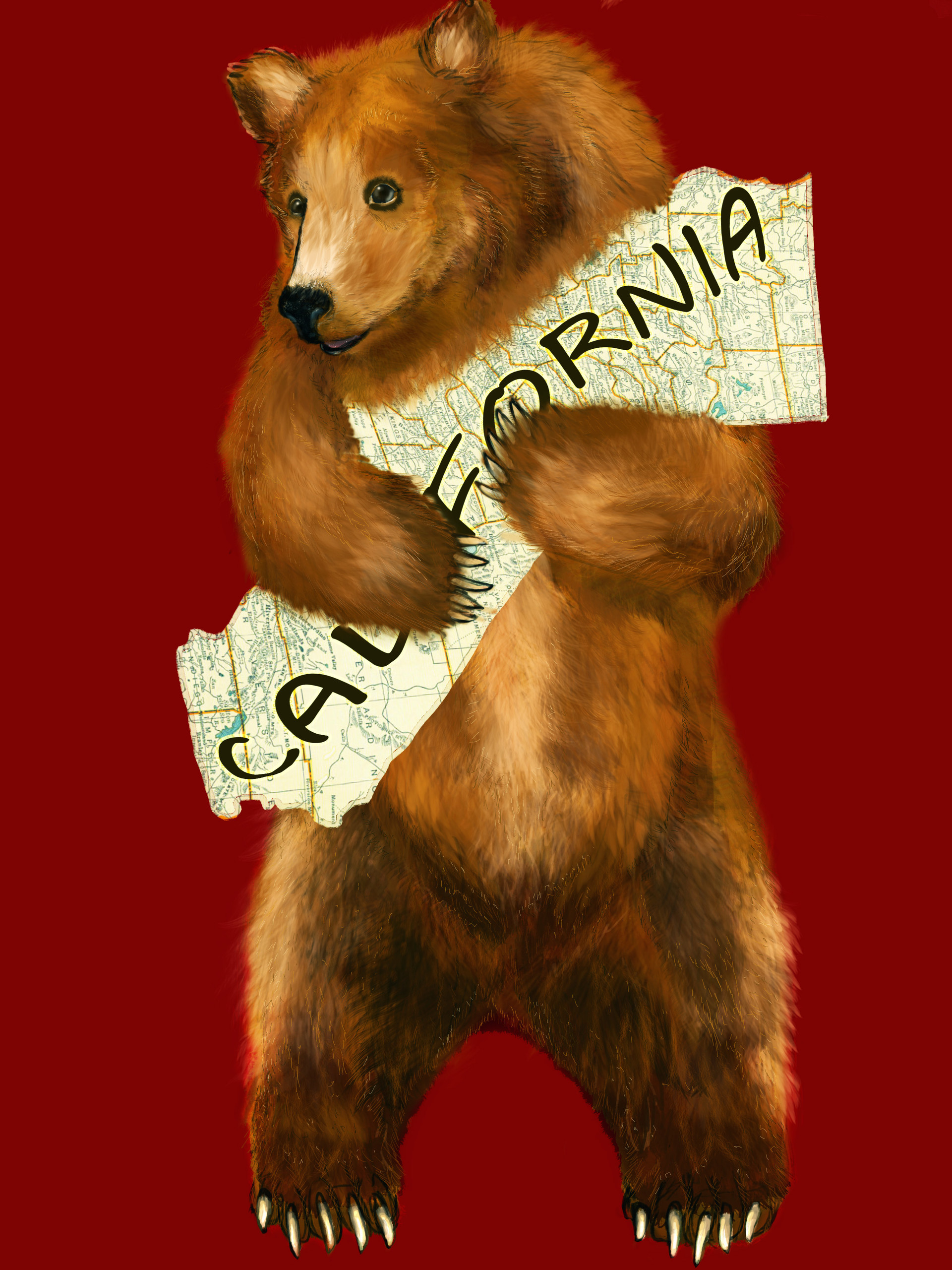 Alexandra hall pinner bear1words