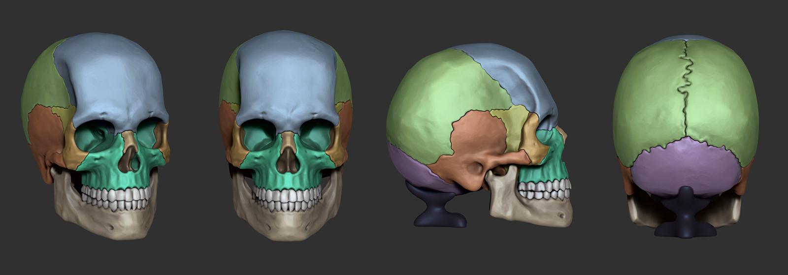 Hector moran skullscreenshots