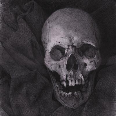 Brad wright skullstudy1