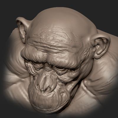 Chimp WIP speed sculpt