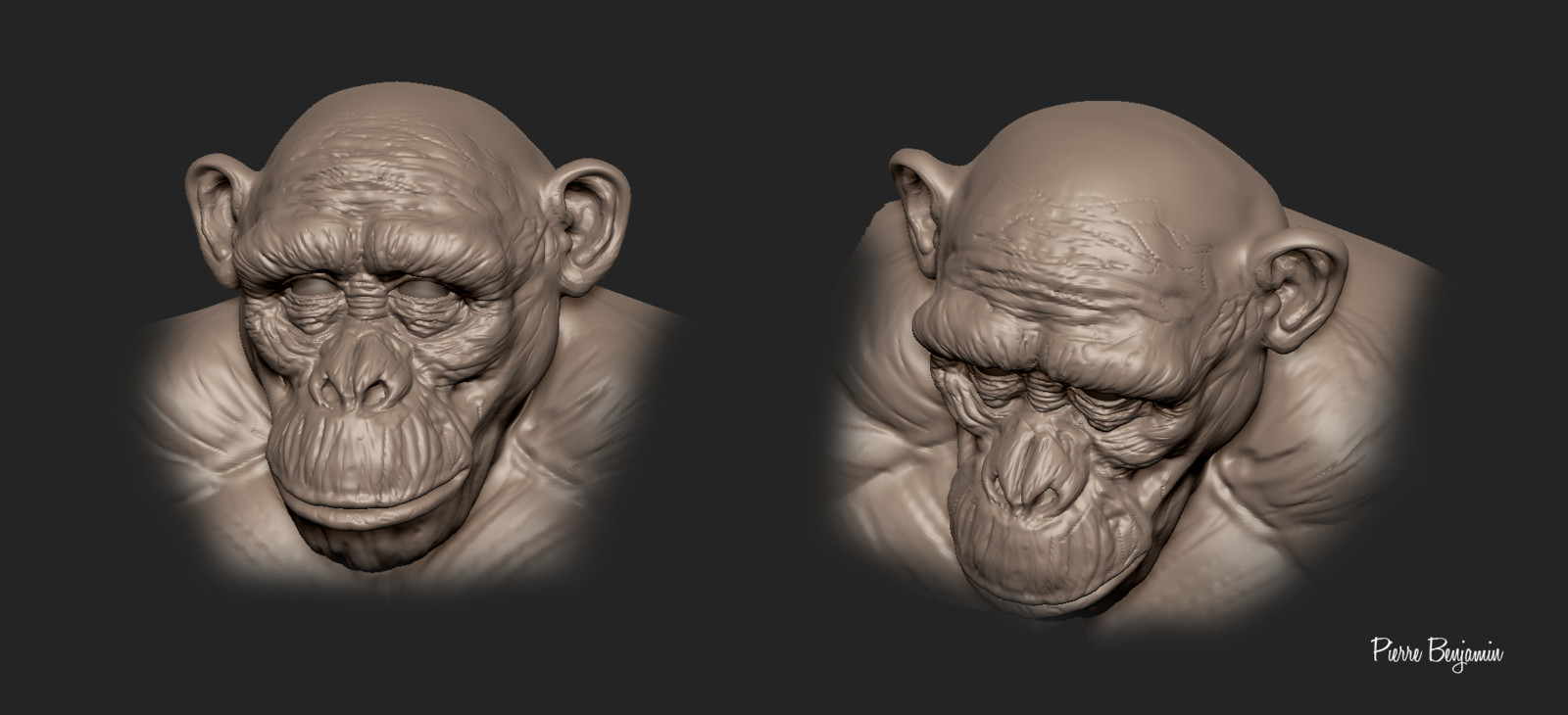 Chimp WIP speed sculpt
