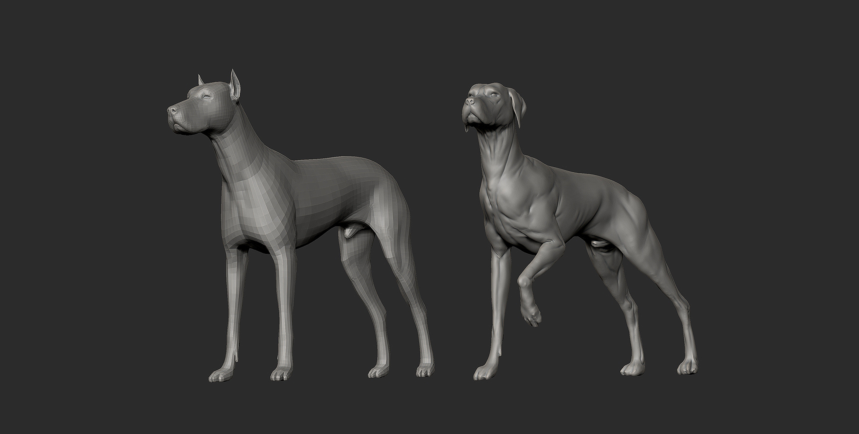 Sometimes I start from a ZTool to have a good base to start with. In this case I used the Dog found in the default Library (Left one).