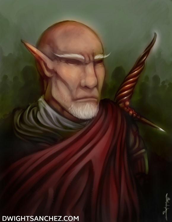 Elf Warlord