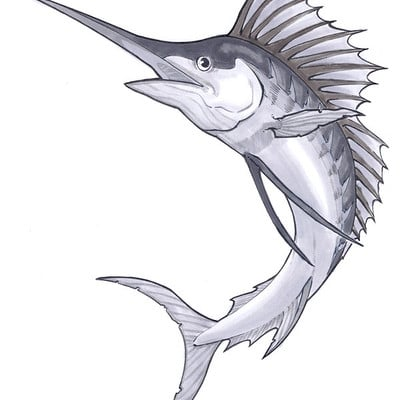 Saimon toncelli tattoo design marlin color by artbysai