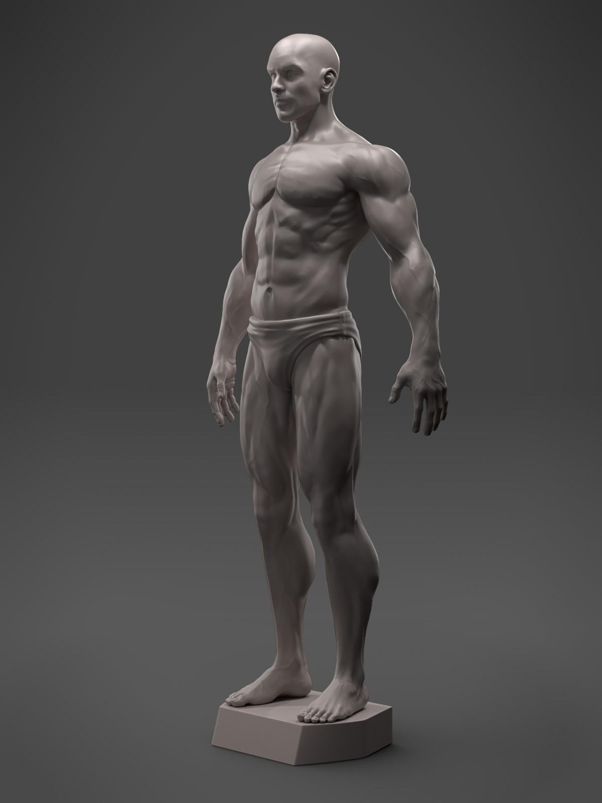 Hector moran anatomyguy quarter