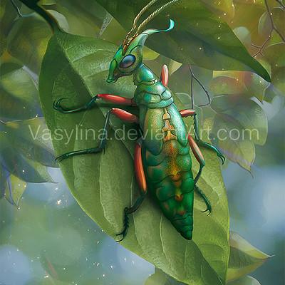 Vasilyna holod insect
