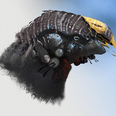 Fred palacio fredpalacio e creature 001 yellowbill www send
