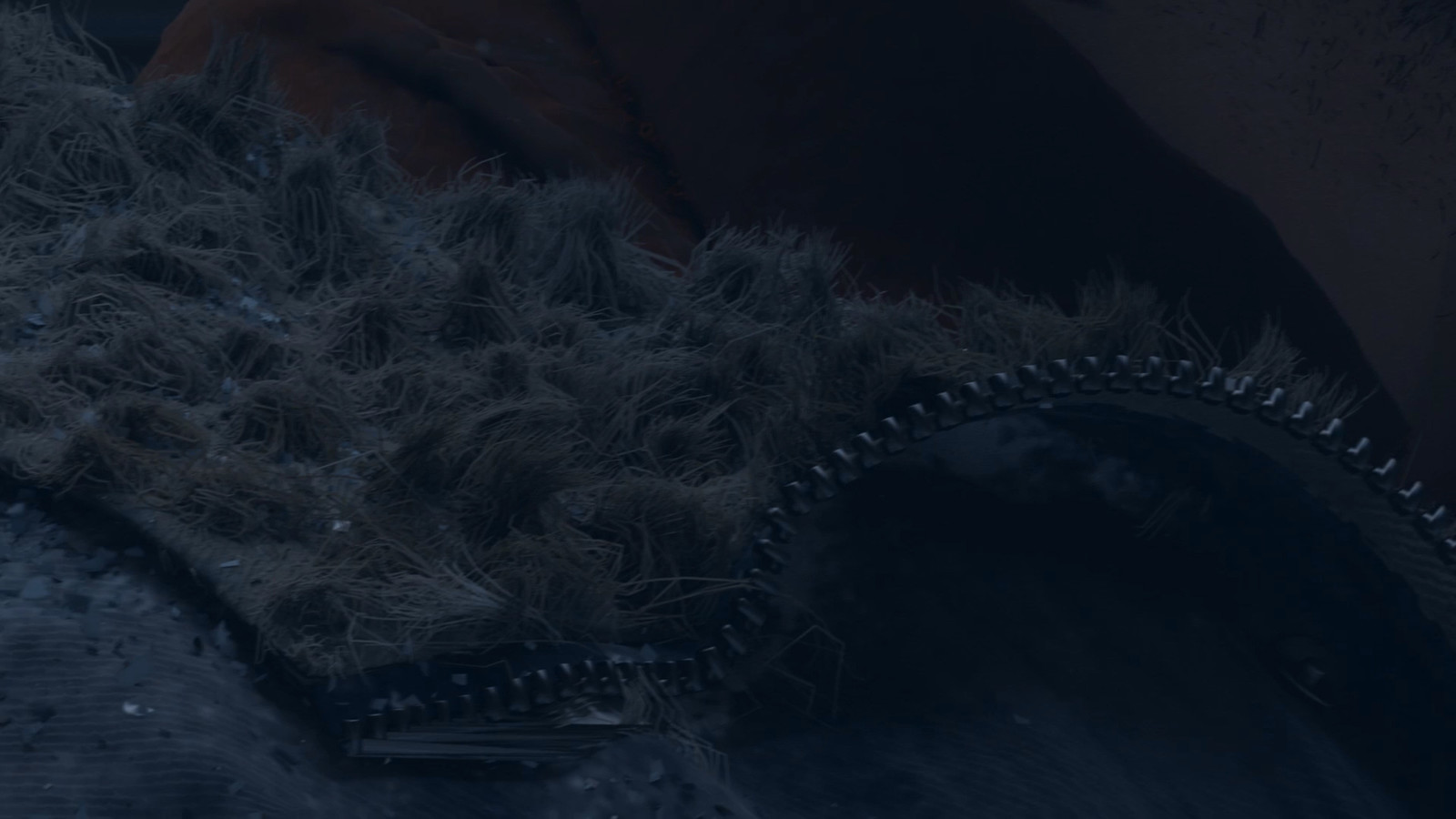 Only did the cloth, modeling texturing, shading and fur