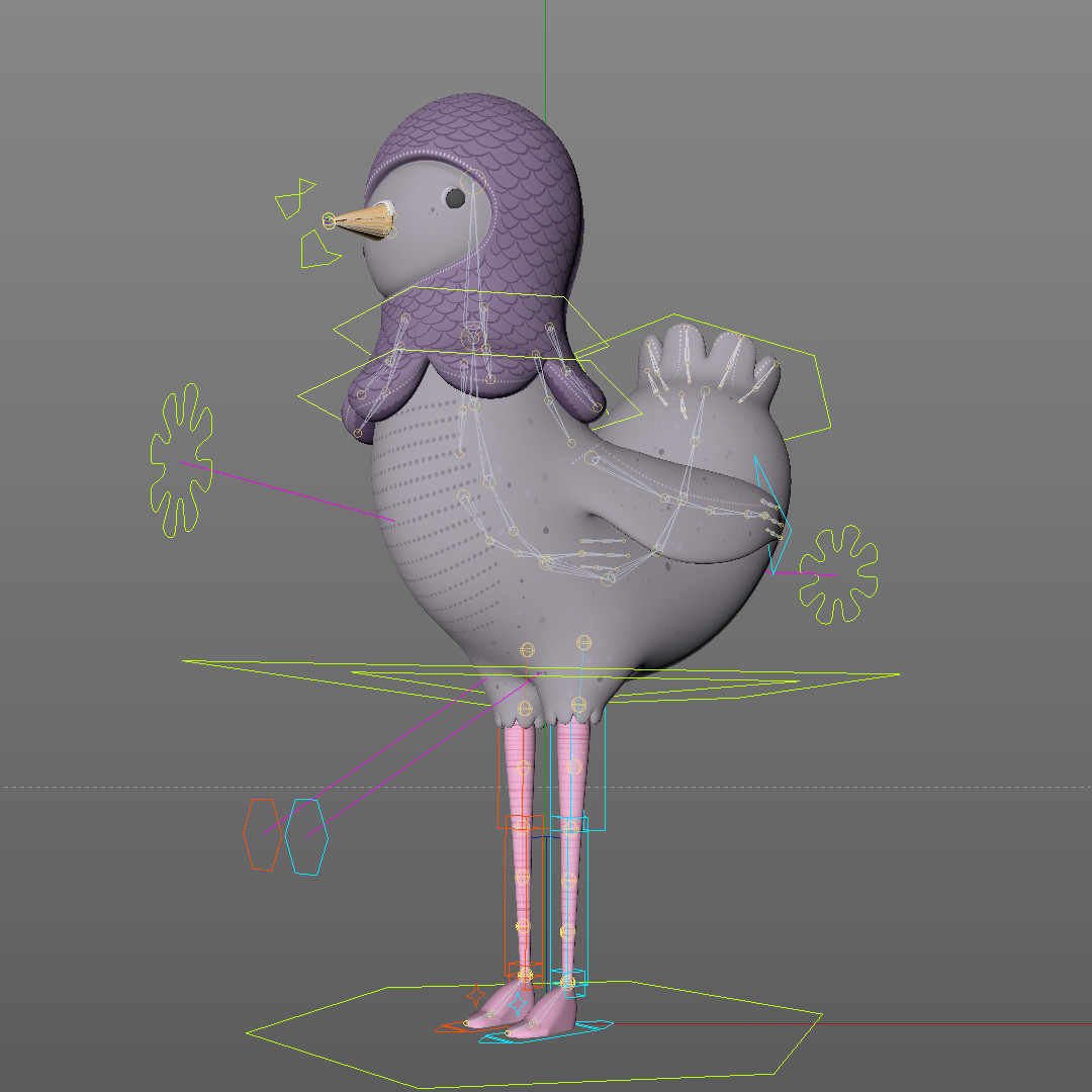 Chris schofield pigeonrig