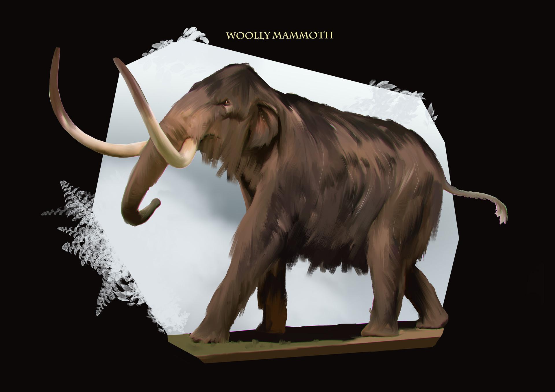 Lucaciu roland mammoth 1