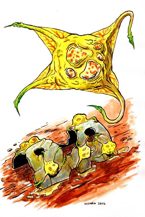 Khairul hisham rust polyp