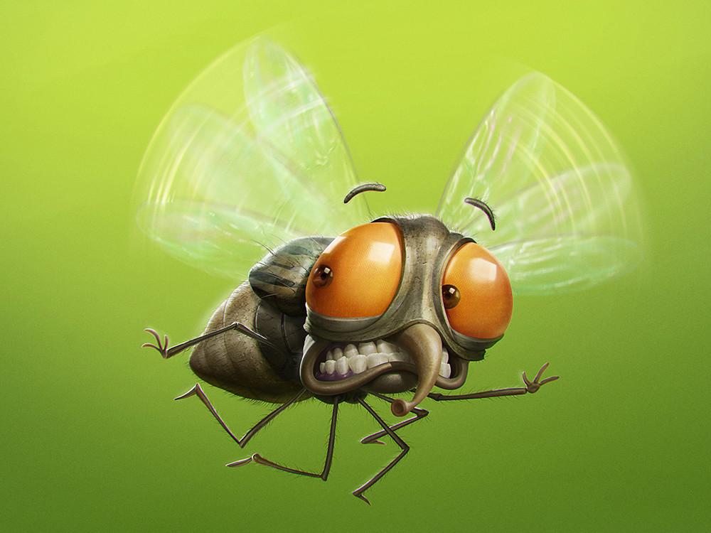 Веселые картинки про муху
