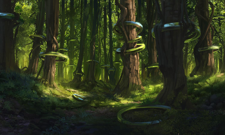 Florian moncomble 02052016 forest