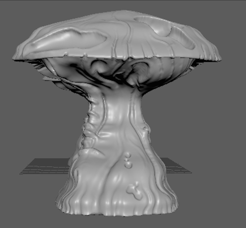 Amy seaman mushroom 02