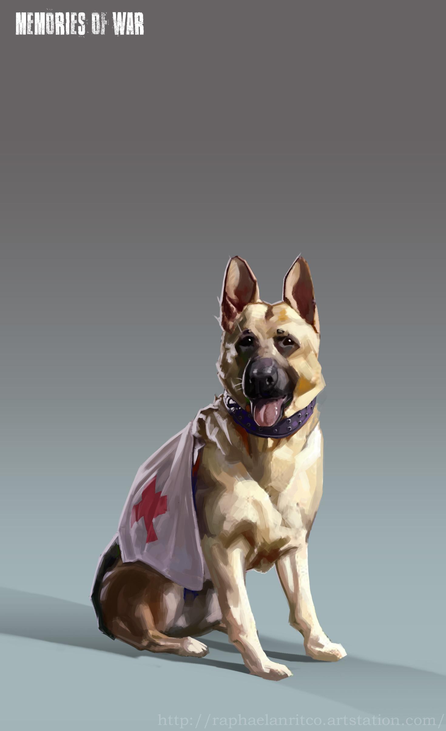 Nicolas morales 7 concept g civilians pathfinder dog final