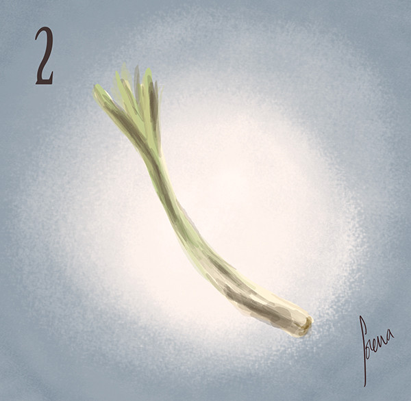 Lorena loguen the spring onion 02 by lorena loguen