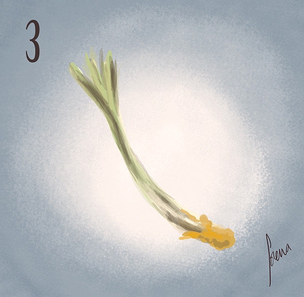 Lorena loguen the spring onion 03 by lorena loguen
