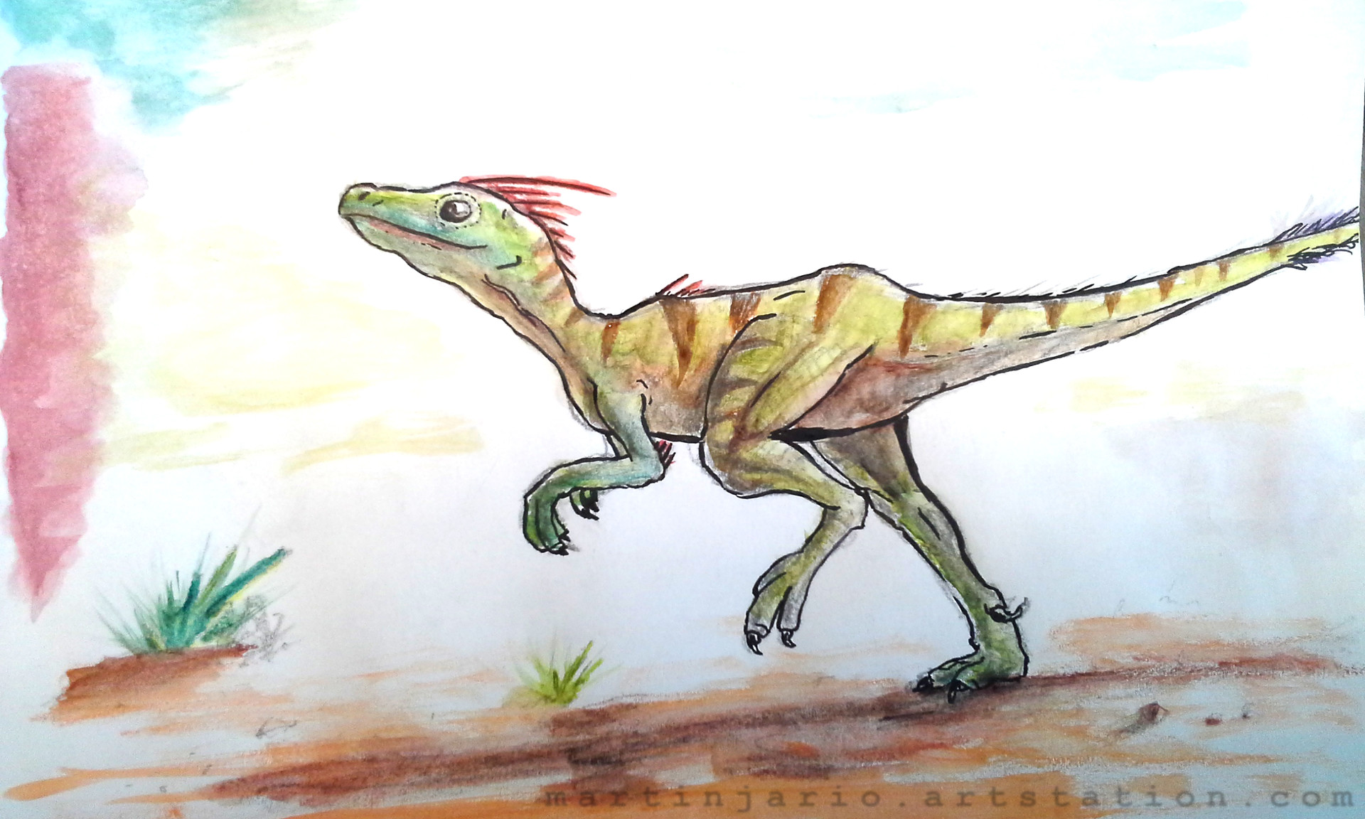 Martin jario watercolor raptor martinjario