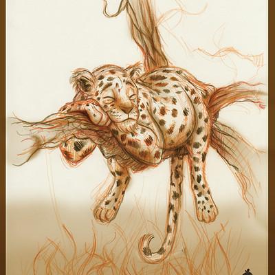 Vipin jacob sleeping leopard