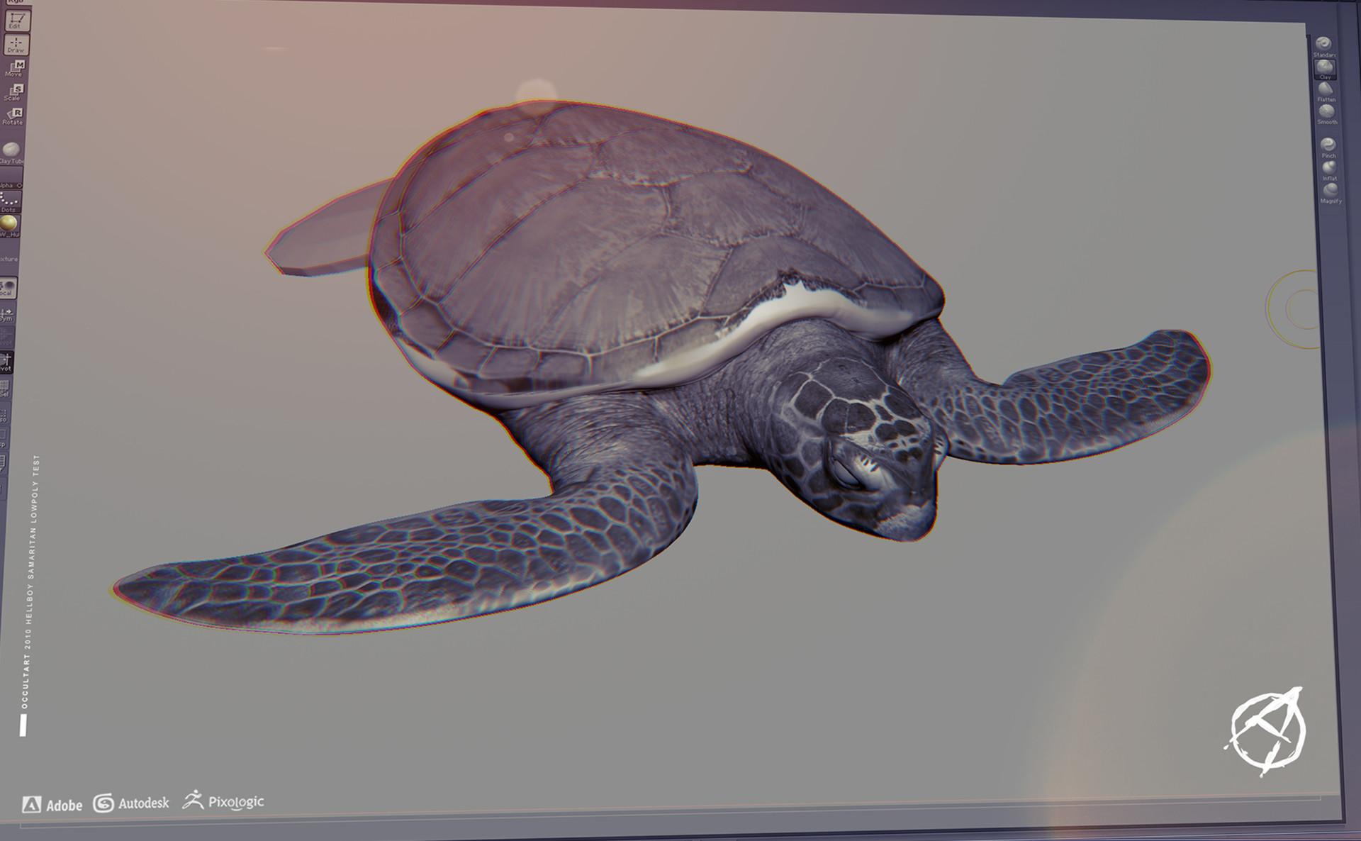 Occultart   turtletest 001
