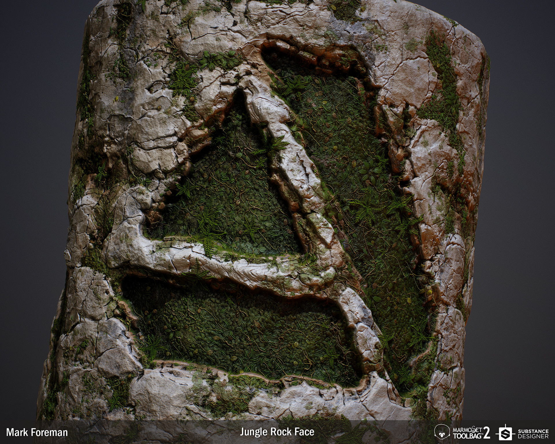 Artstation jungle rock face substance mark foreman baditri Images