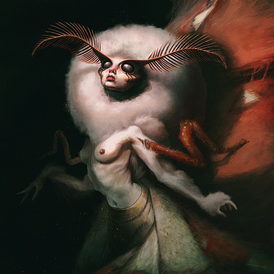 Quentin castel image 2 lady bombyx
