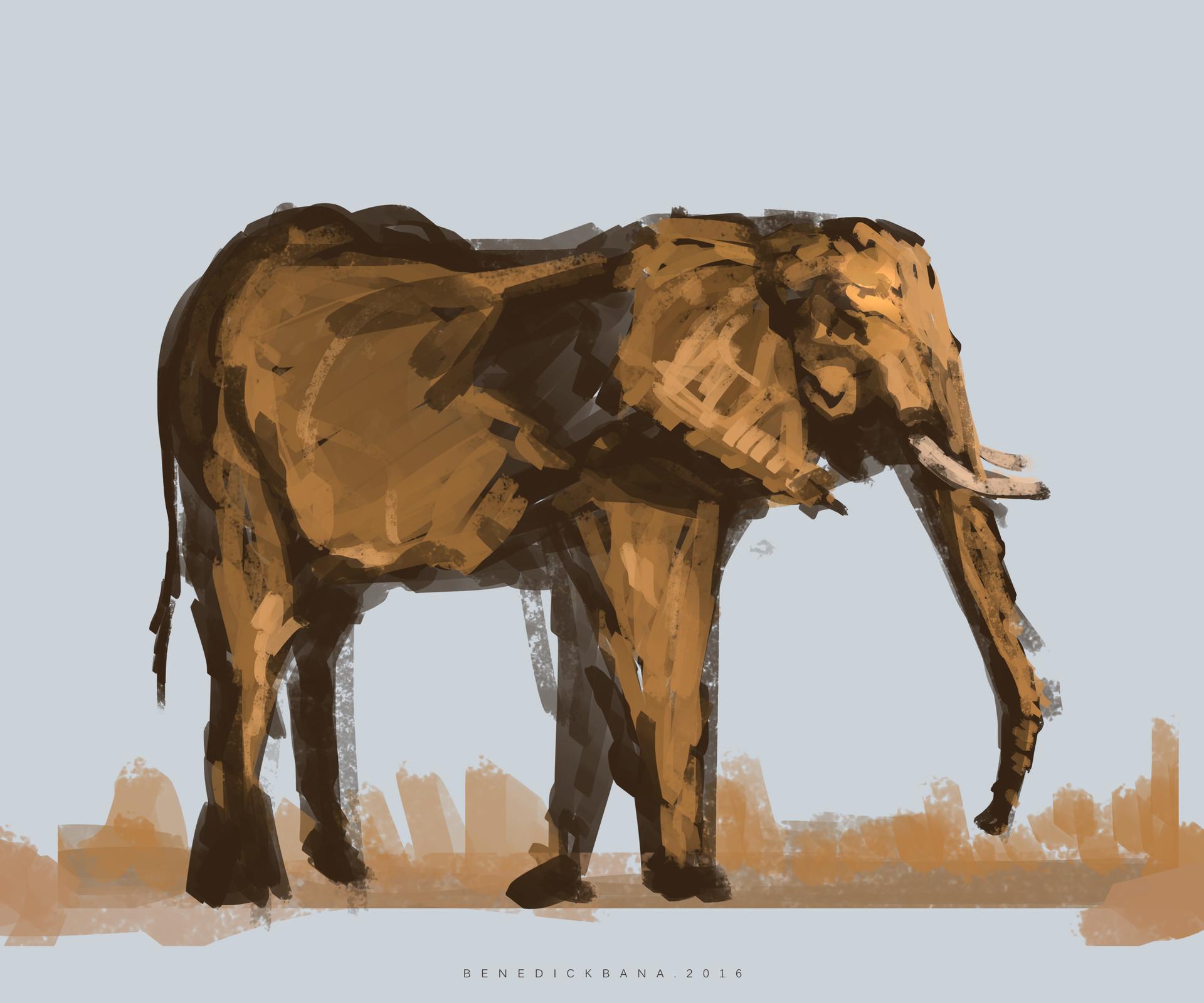 Benedick bana elephant study 002
