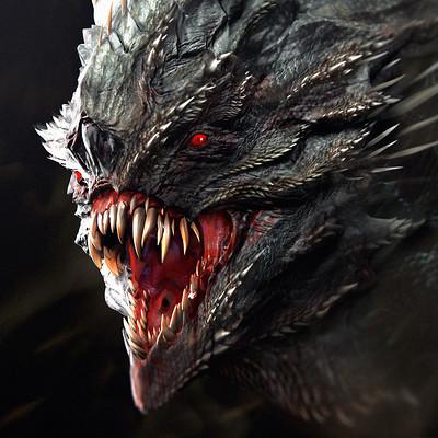 Soufiane idrassi dragon