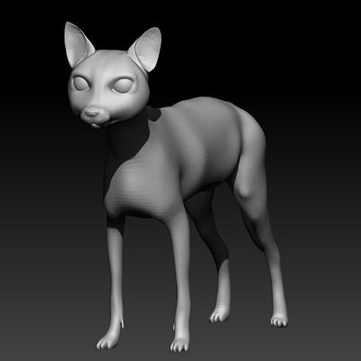 Roberto gacio gato1