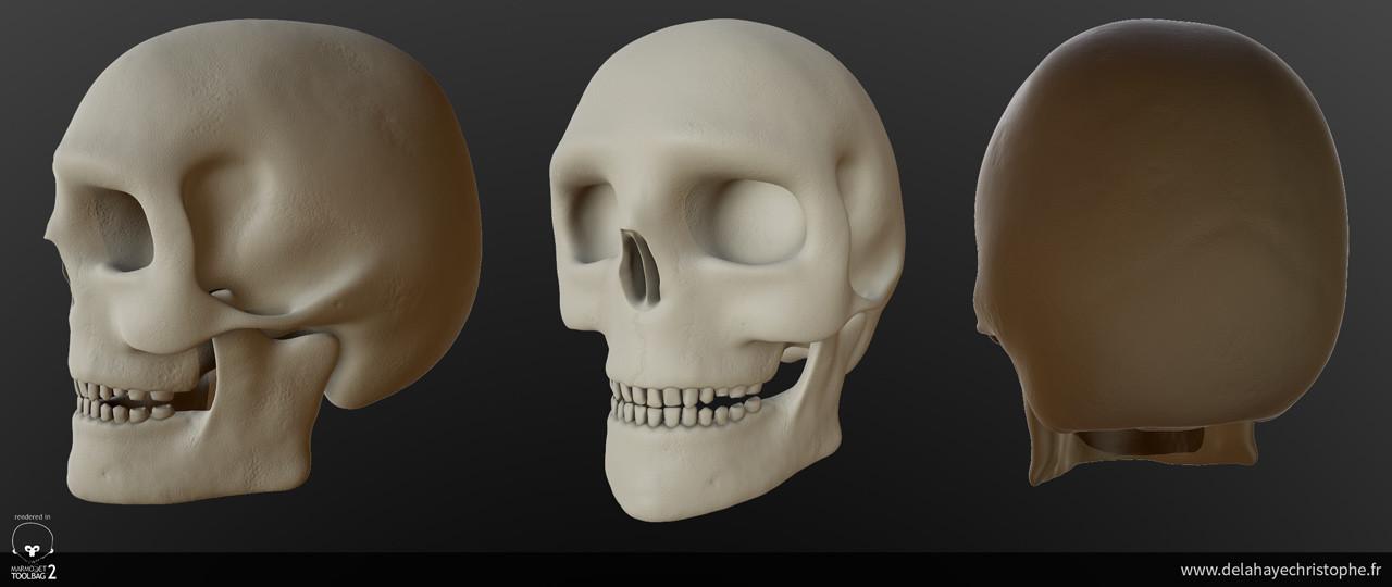 Christophe delahaye 05 skull