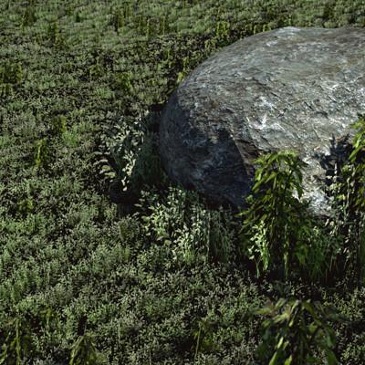 Chris ebbinger stoneingras2