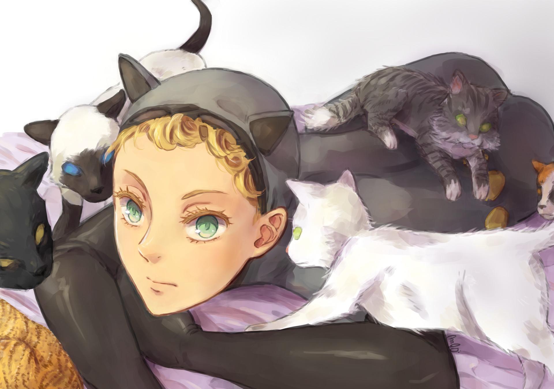 Jesu gormaz catwoman final