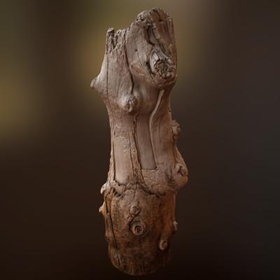 Boyd mckenzie driftwoodtrunk01 render01