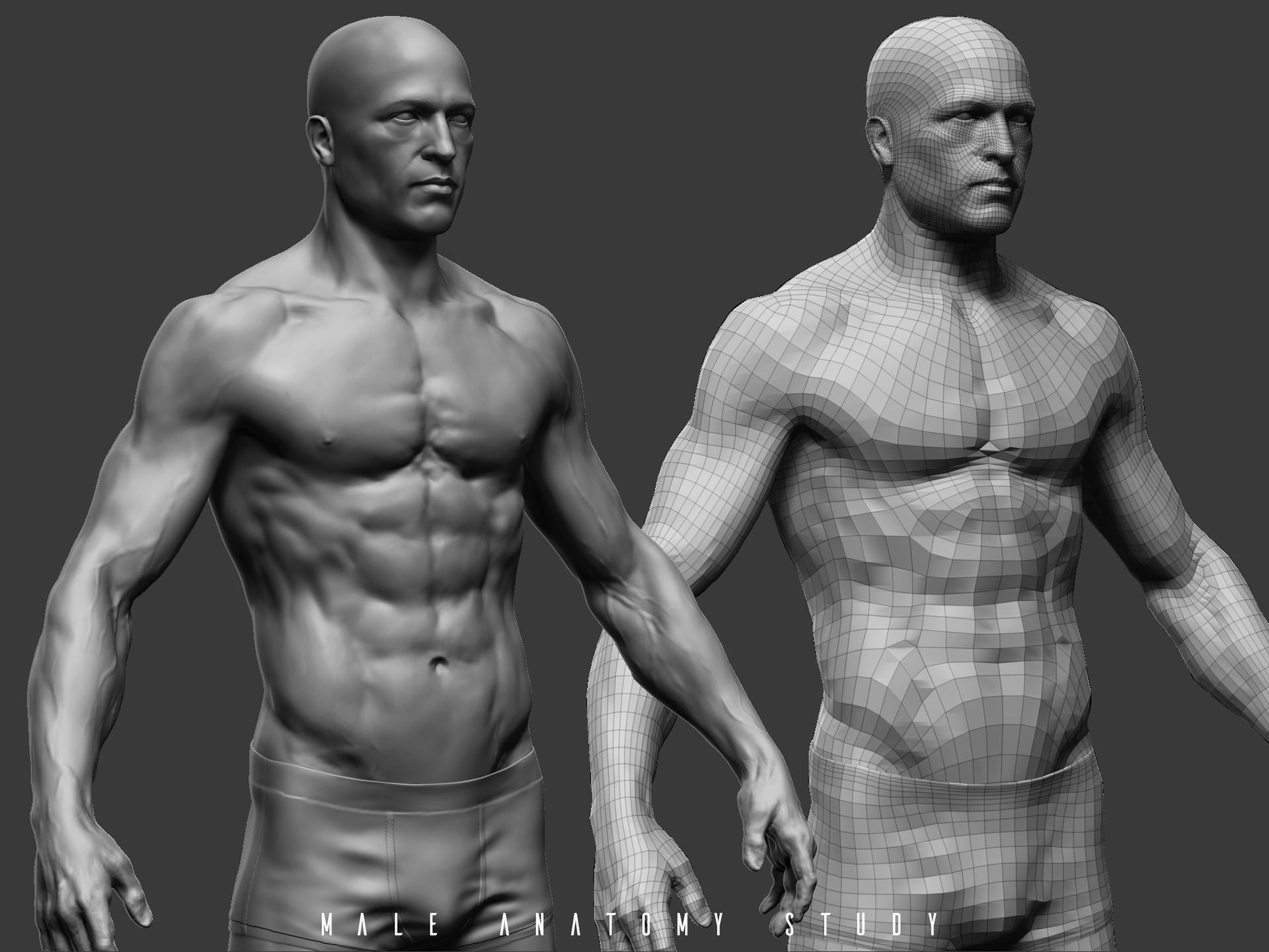 Wojciech Odrzywolski - male anatomy