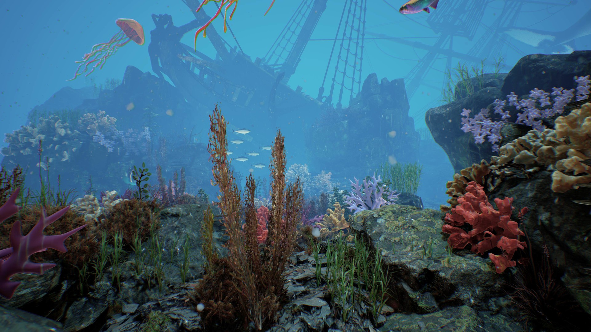 Underwater scene 4