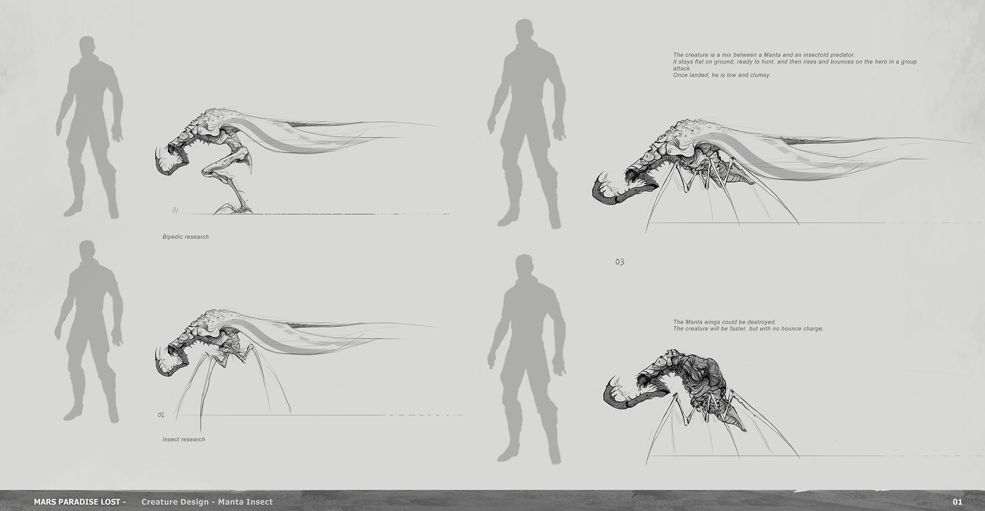 Alexandre chaudret mpl creature manta insect research01