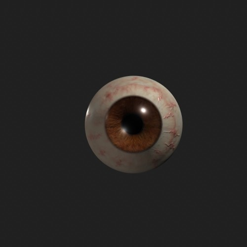 Our bloodshot brown Eyeball ready to sit in the head of our model.