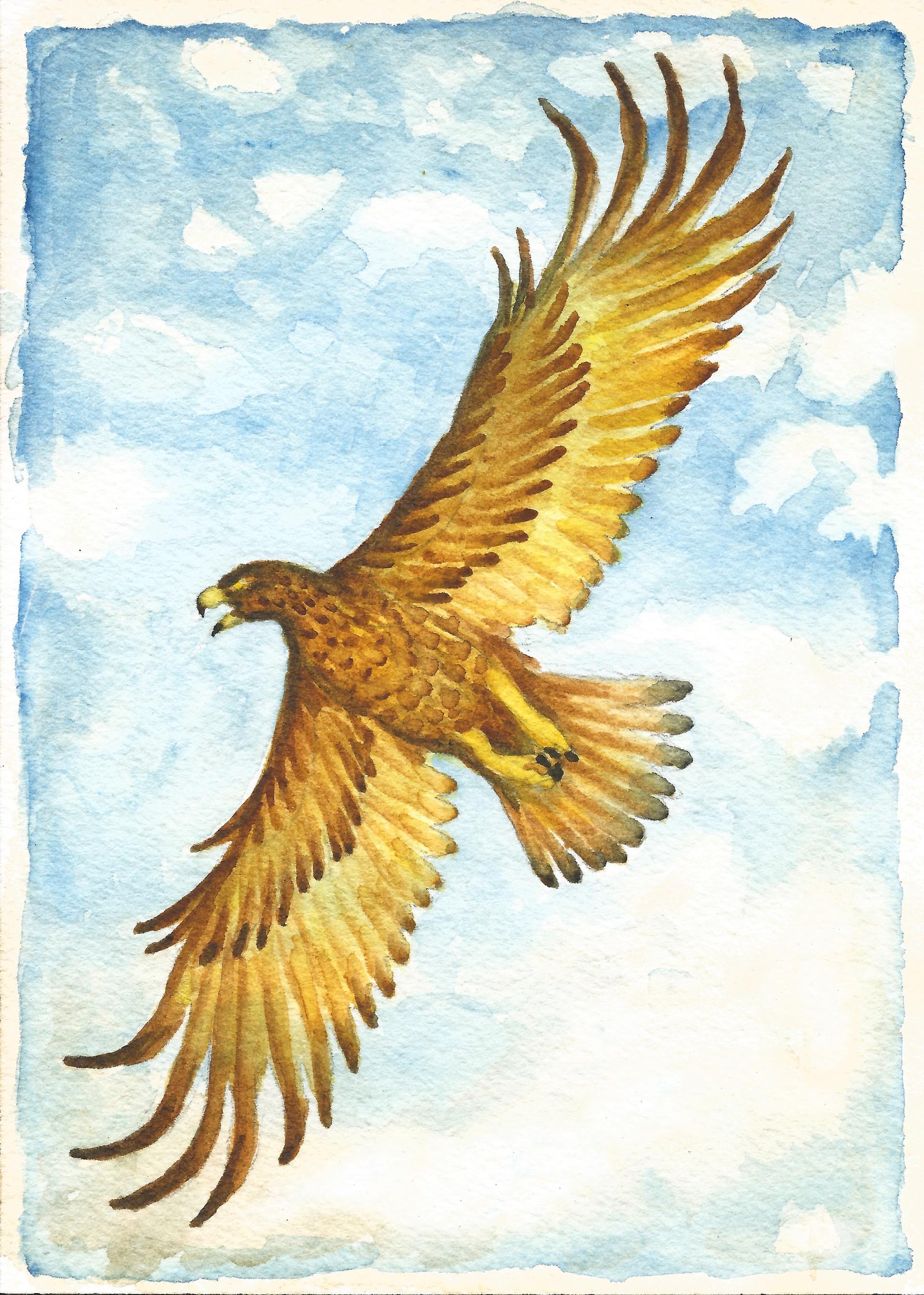 Patrick weck lotr 2 eagle print 2