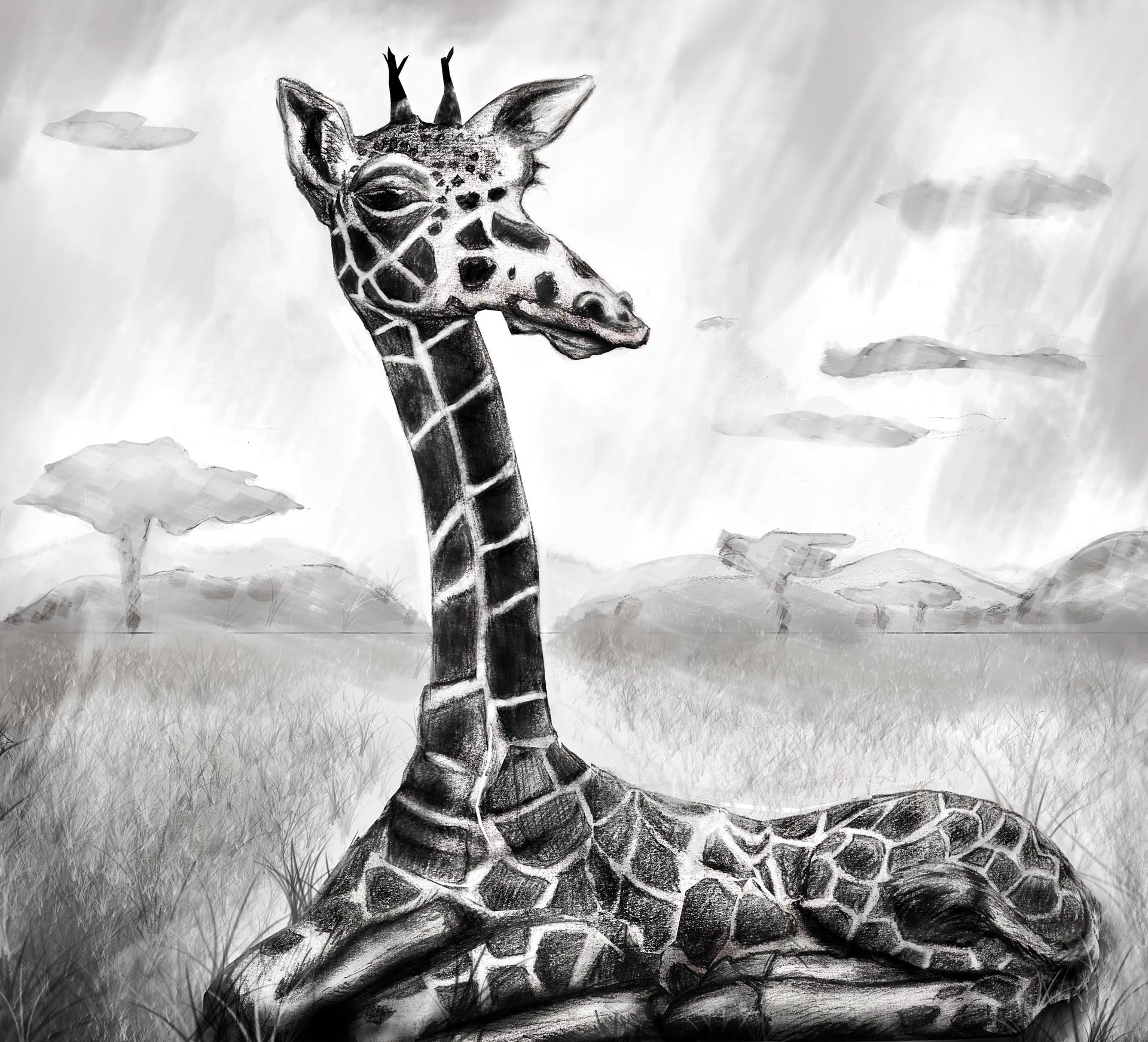Thomas Fluharty Art Of The Sketch