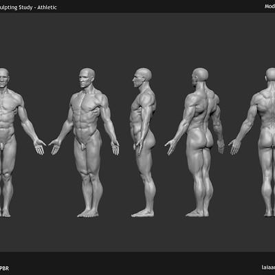 Laia aubao x015 anatomy study01