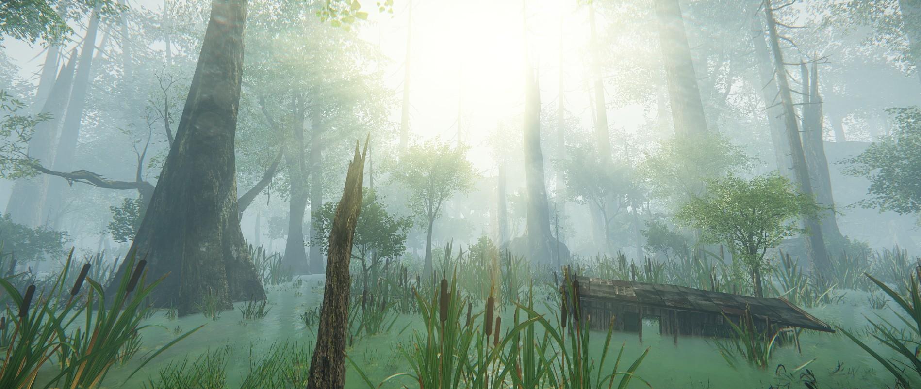 Ashton jensen dead swamp 4