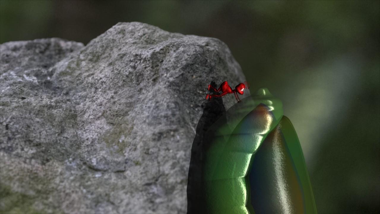 Bemin jackson hormiga